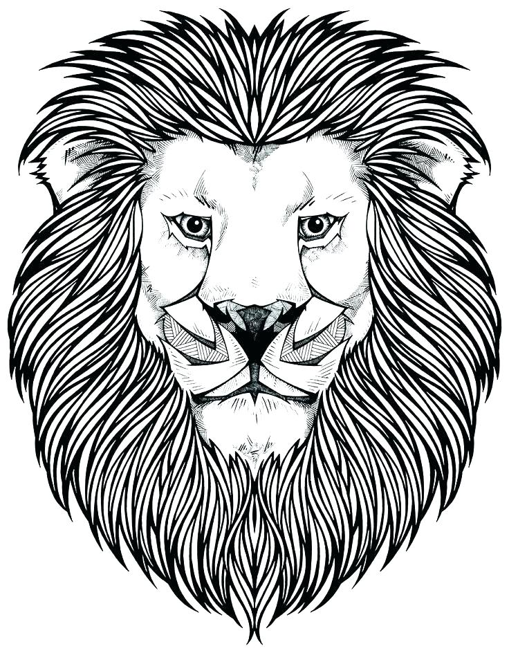 Lion King Coloring Pages 1