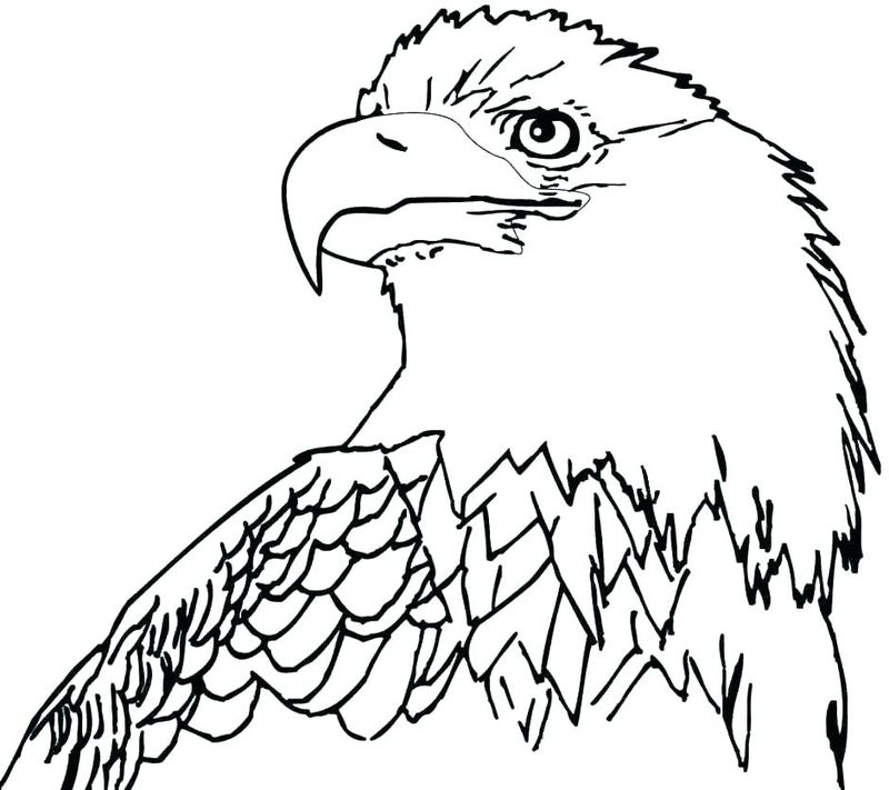 Mighty Eagle Coloring Pages