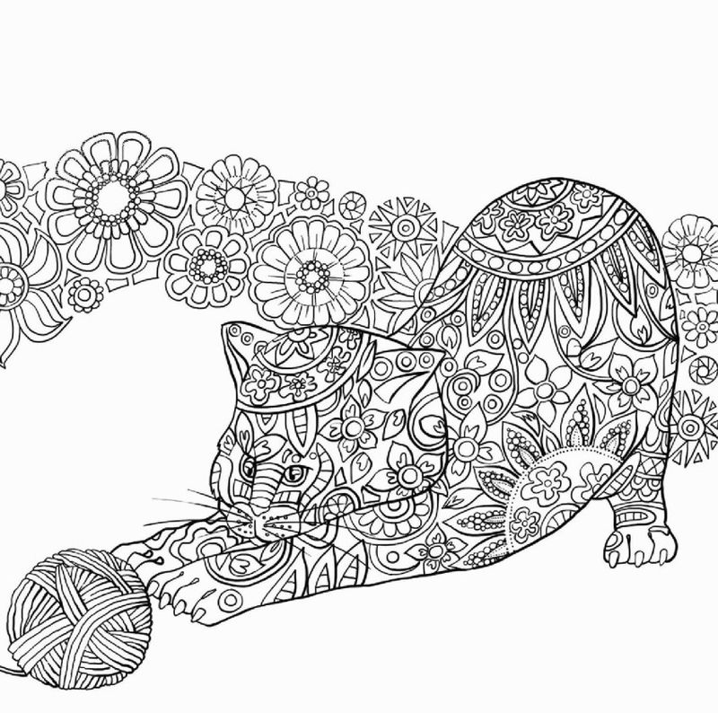 Minecraft Cheetah Coloring Pages