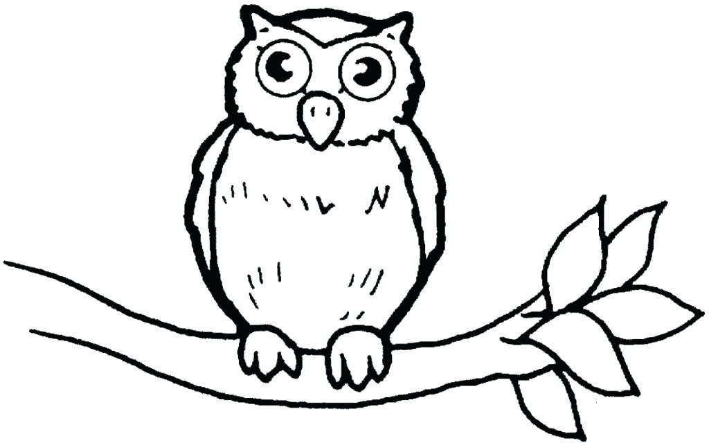 Owl Coloring Pages For Adults Ideas