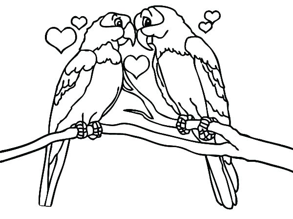 Owl Coloring Pages For Kindergarten