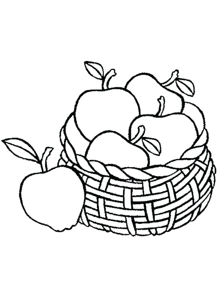 Parts Of An Apple Coloring Page Free