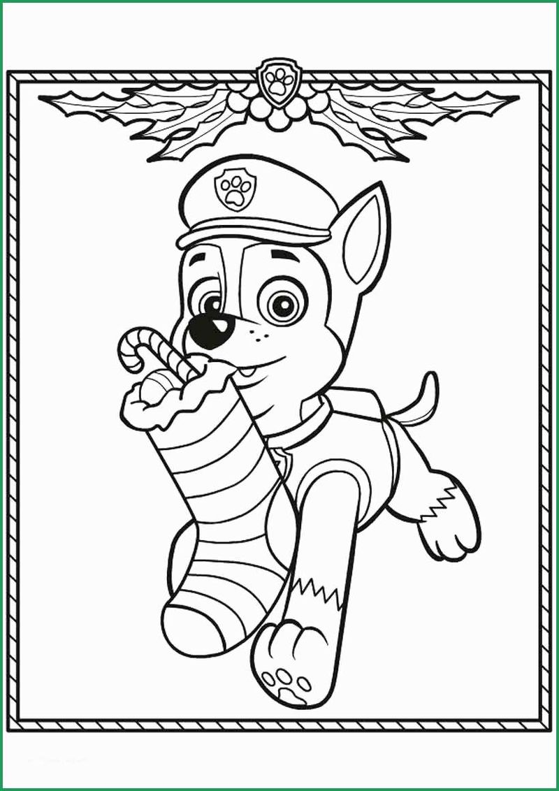 Paw Patrol Characters Coloring Page