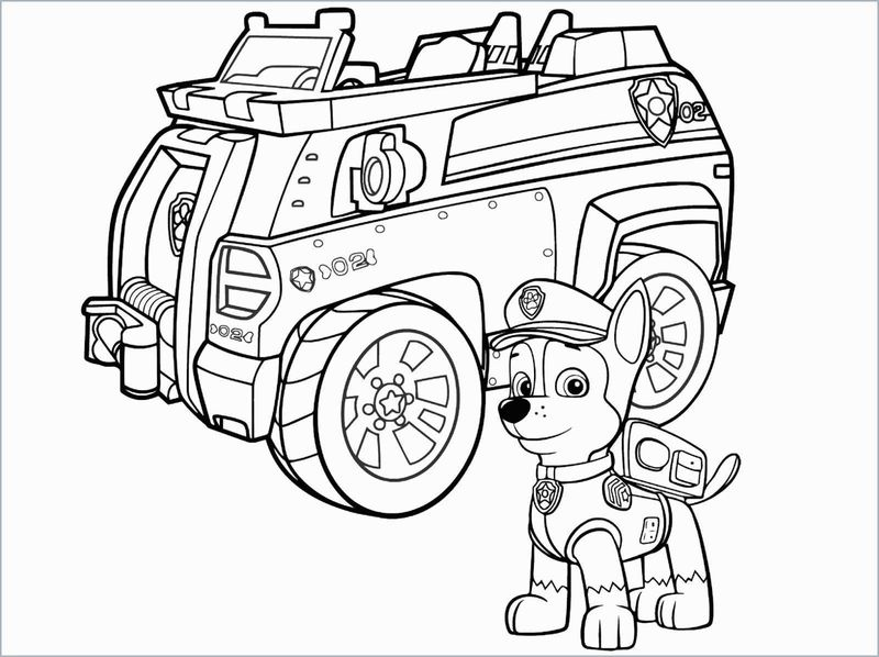Paw Patrol Color Coloring Pages