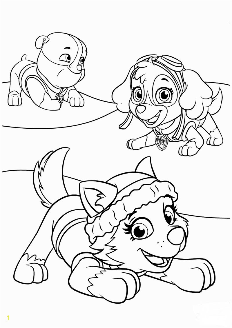 Paw Patrol Coloring Pages Badges