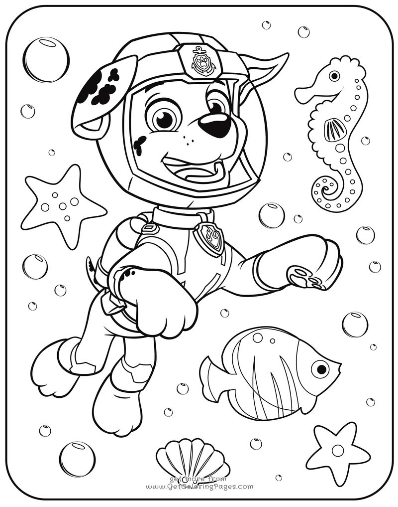 Paw Patrol Coloring Pages Everest Badge