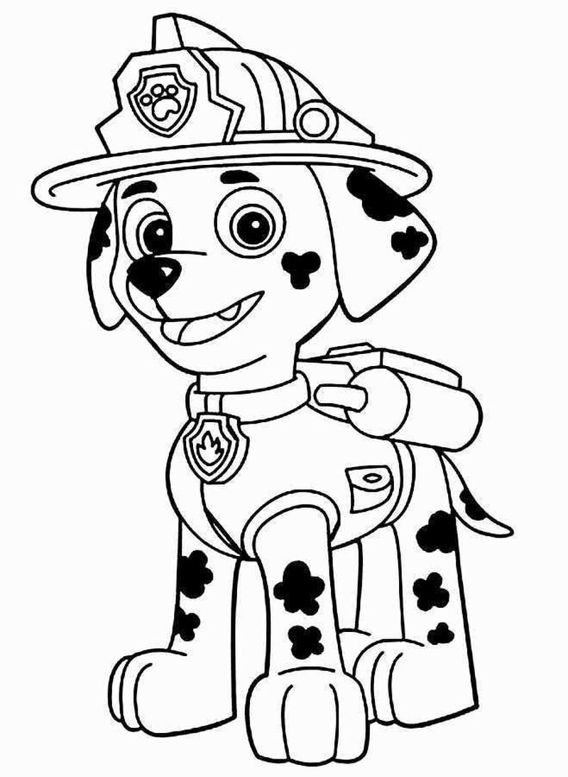 Paw Patrol Coloring Pages Super Coloring