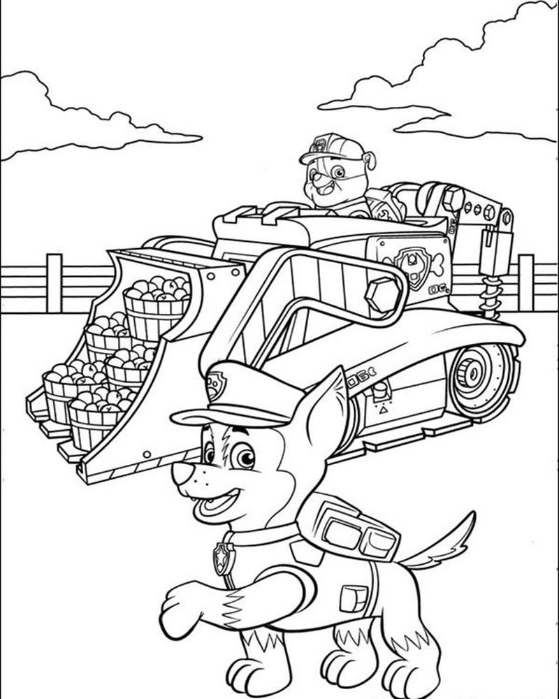Paw Patrol Dogs Coloring Pages