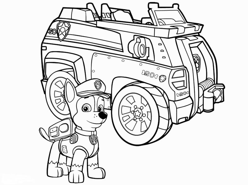 Paw Patrol Speed Coloring Activity Page Fun