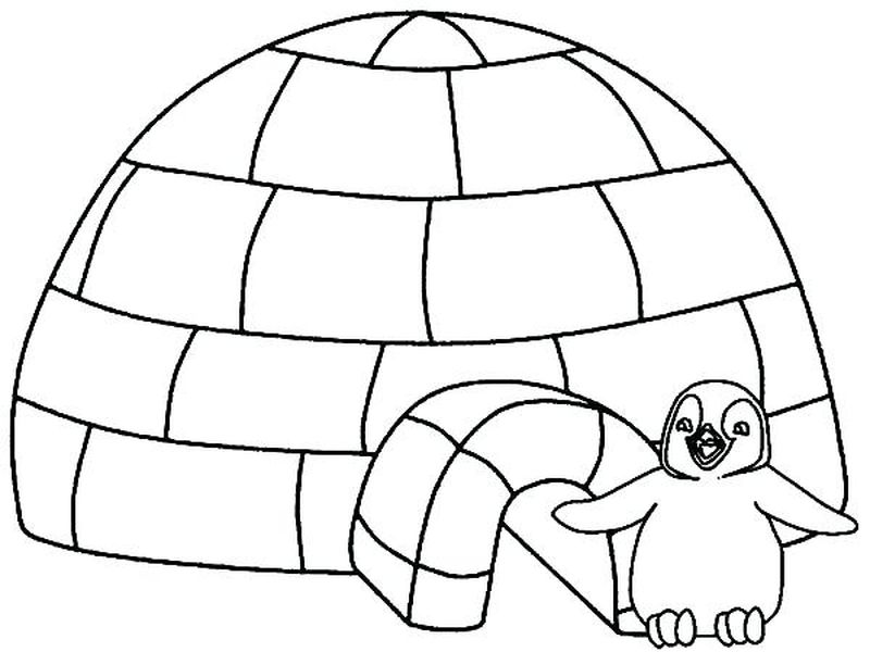 Penguin Coloring Pages Download