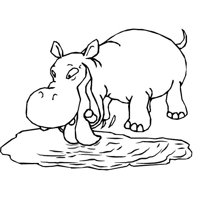 Print Hippo Coloring Pages For Kids