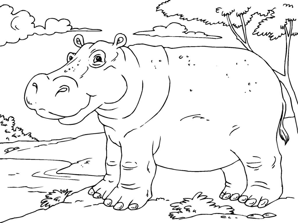 Print Hippo Coloring Pages Pictures