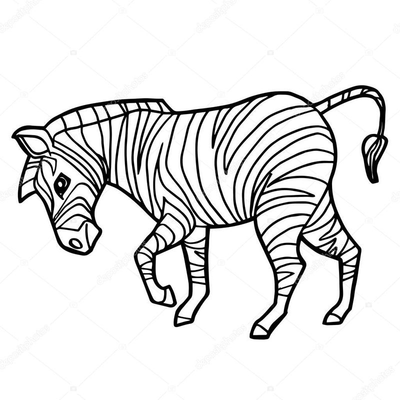Printable Coloring Pages Of A Zebra