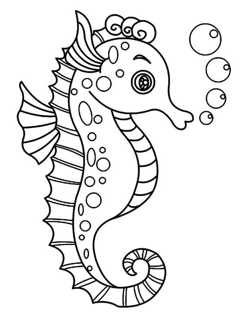 Seahorse Coloring Pages For Prek