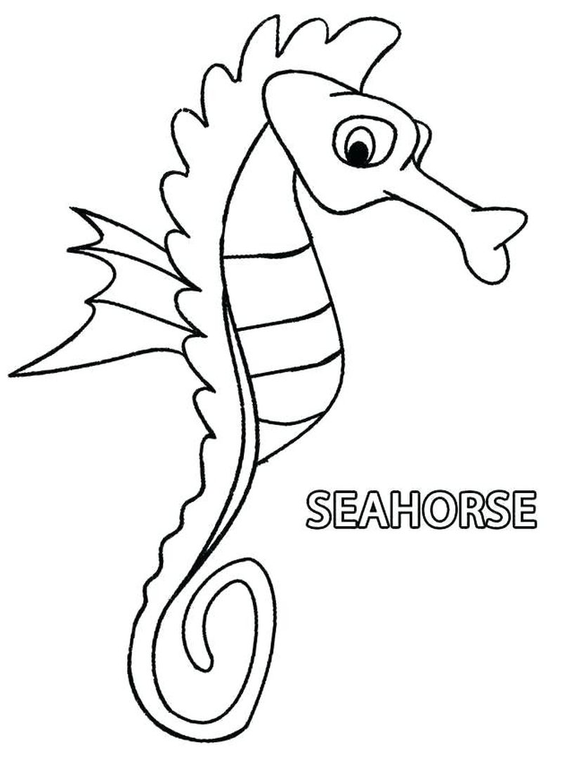 Seahorse Coloring Pages Free