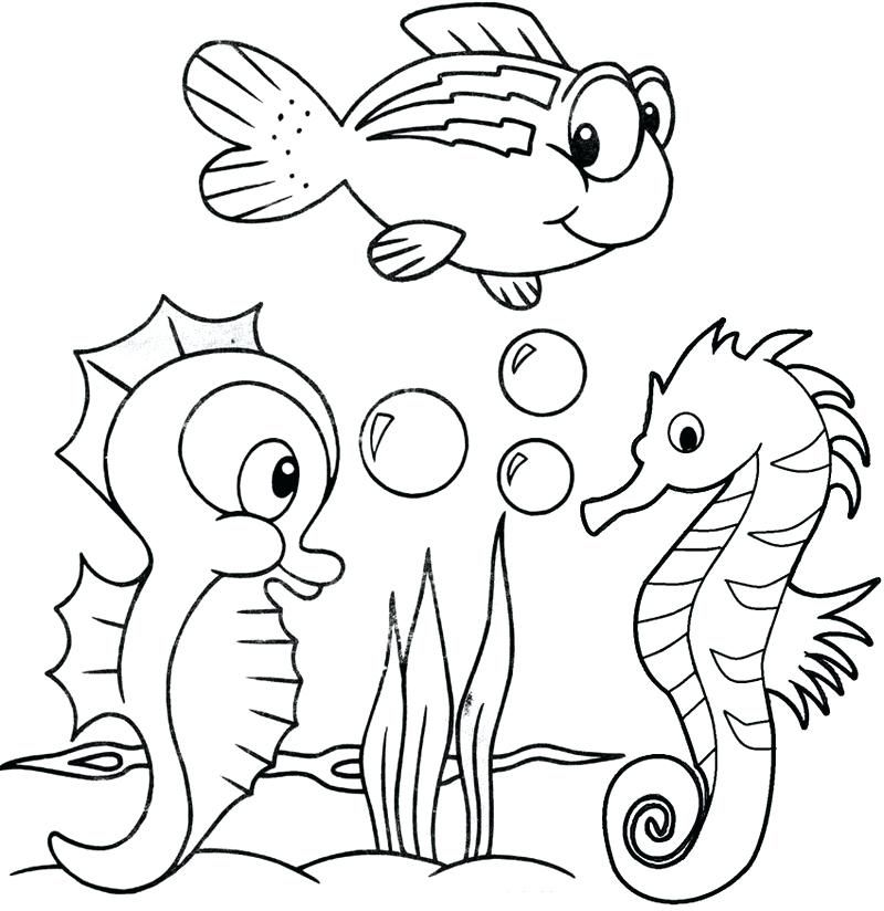 Seahorse Colouring Pages Print
