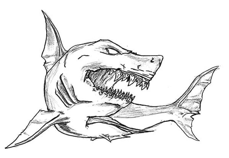 Shark Coloring Pages For Adults