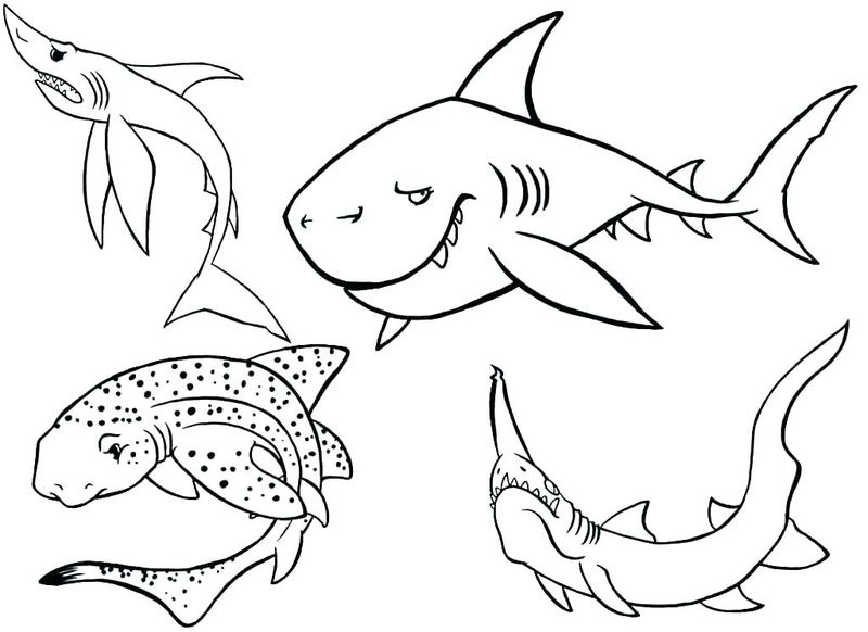 Shark Coloring Pages Realistic