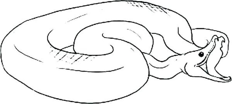 Snake Charmer Coloring Page