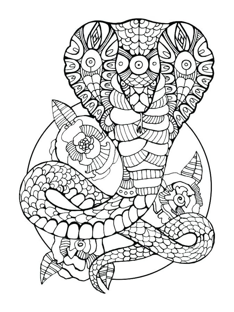 Snake Colouring In Pages Printable