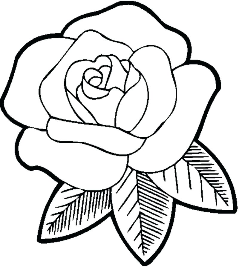 Stained Glass Flowers Coloring Pages