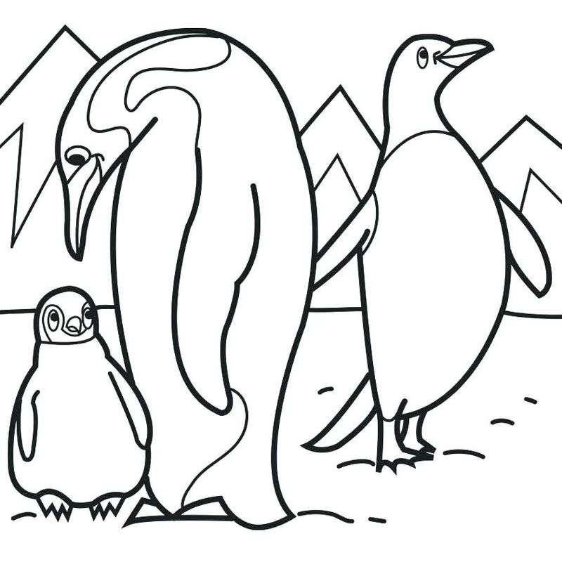 Summer Penguin Coloring Pages
