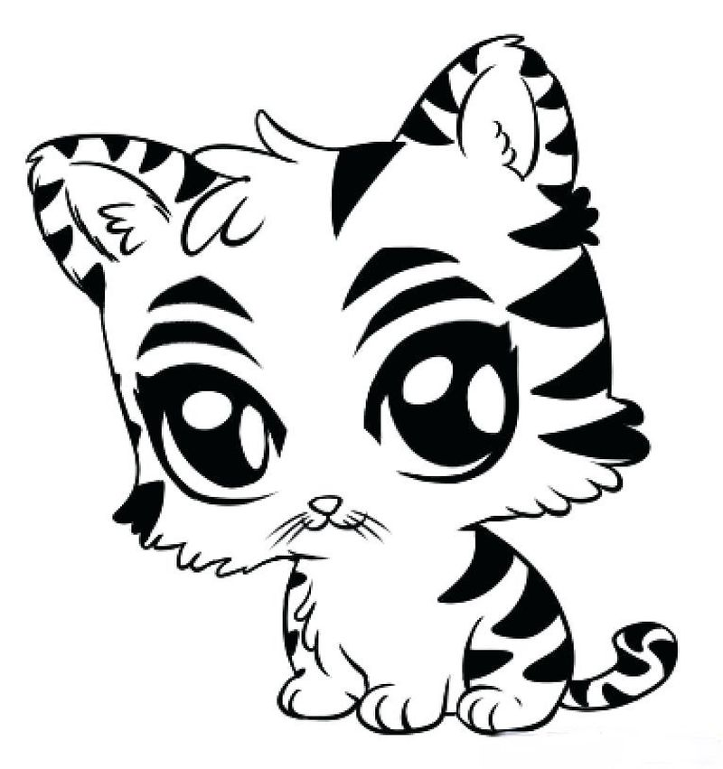 Tiger Cat Coloring Pages