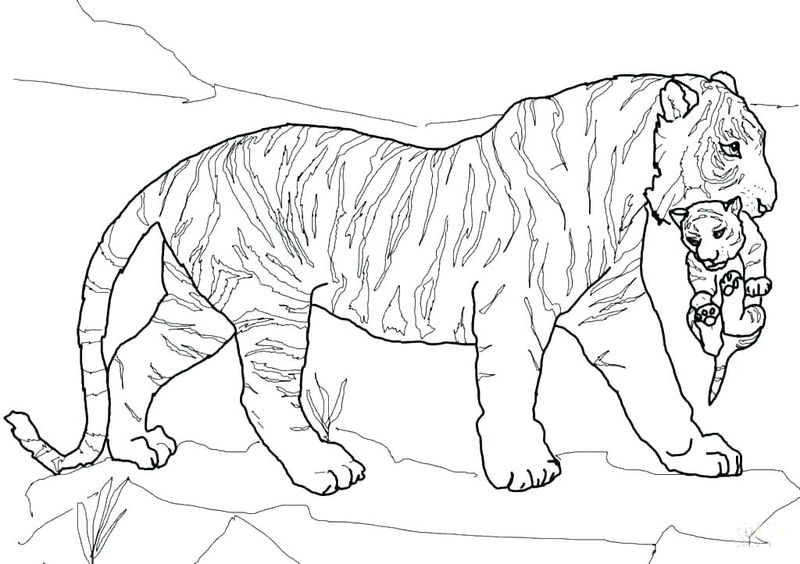 Tiger Claw Coloring Pages