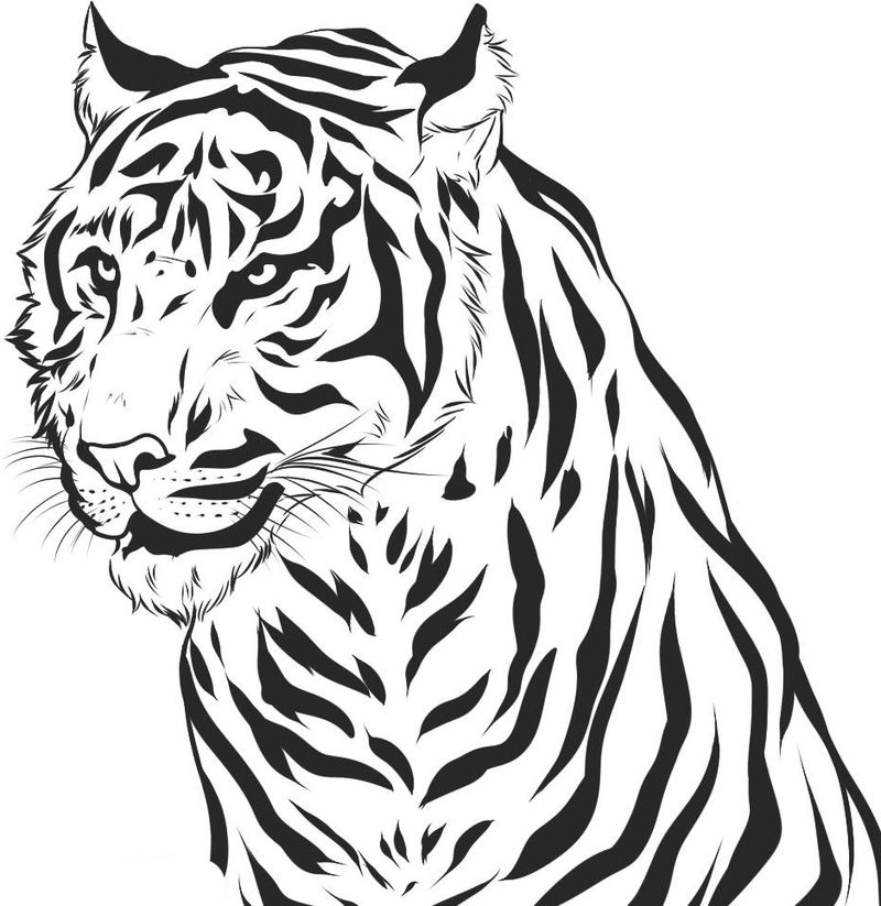 Tiger Coloring Pages For Preschool