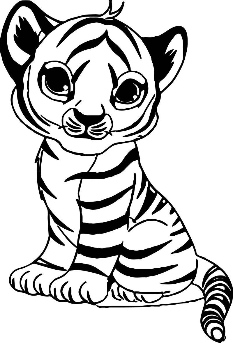Tiger Coloring Pages Free Printables