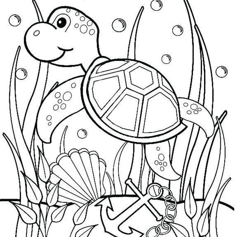 Turtle Coloring Pages For Baby