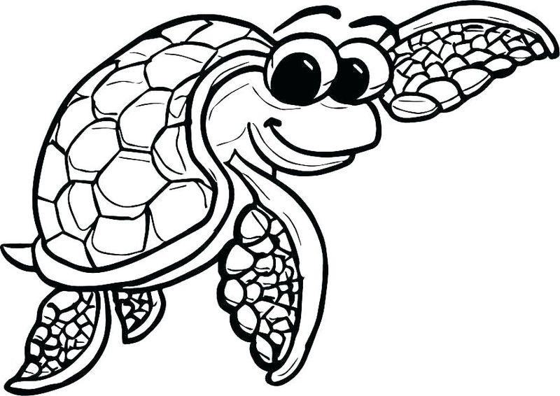 Turtle Coloring Pages Pdf