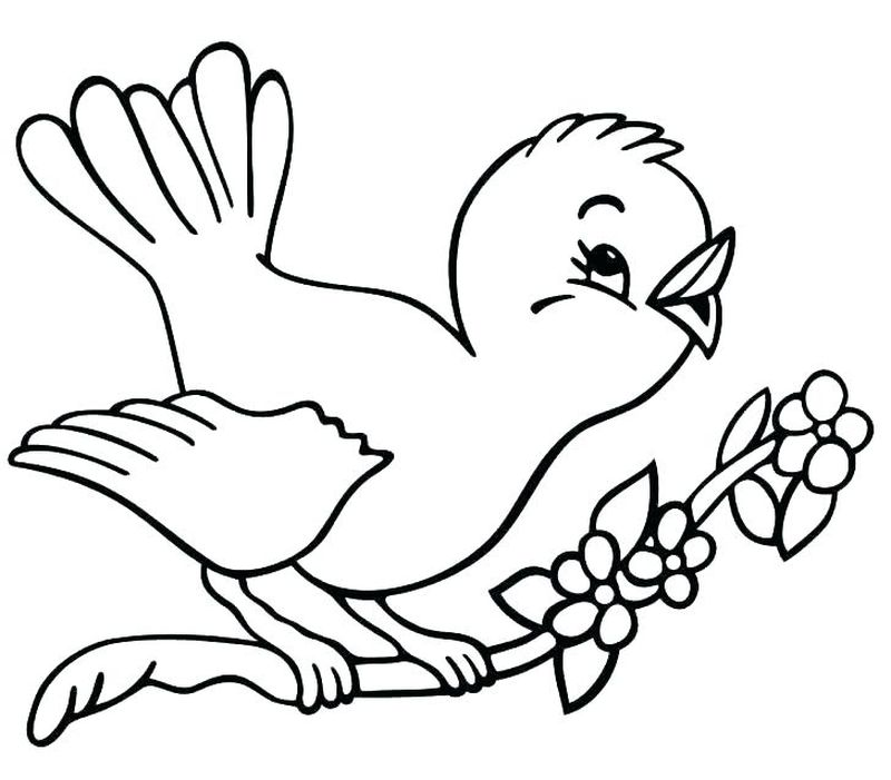 Tweety Bird Coloring Pages Printable Free