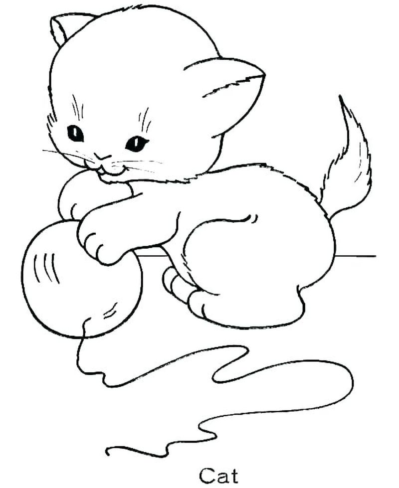 Warrior Cats Coloring Pages Kits