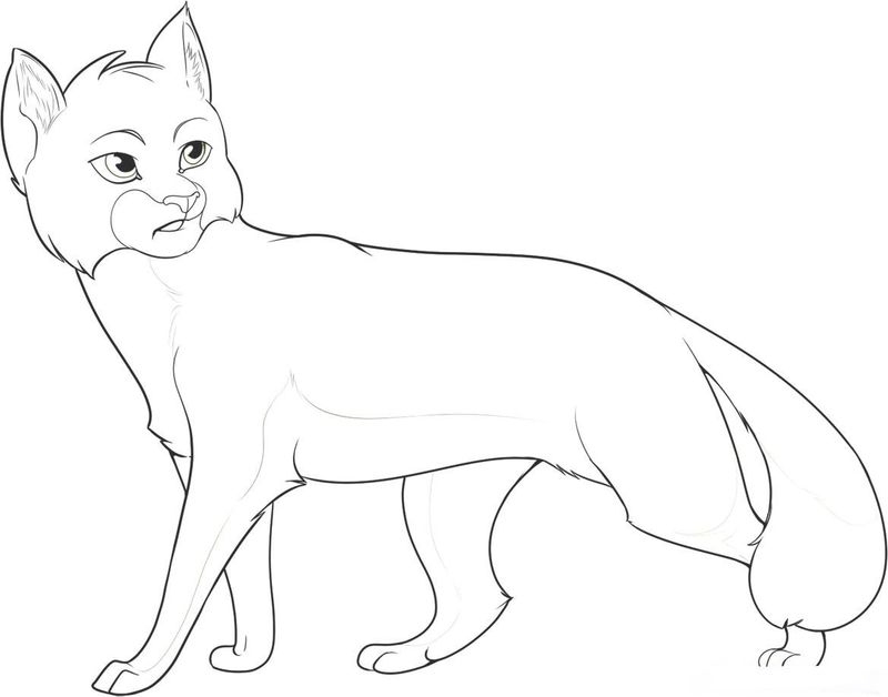 Warrior Cats Coloring Pages Love