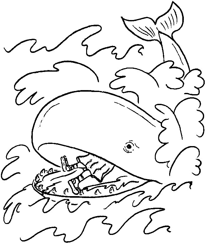 Whale Colouring Pages Pdf
