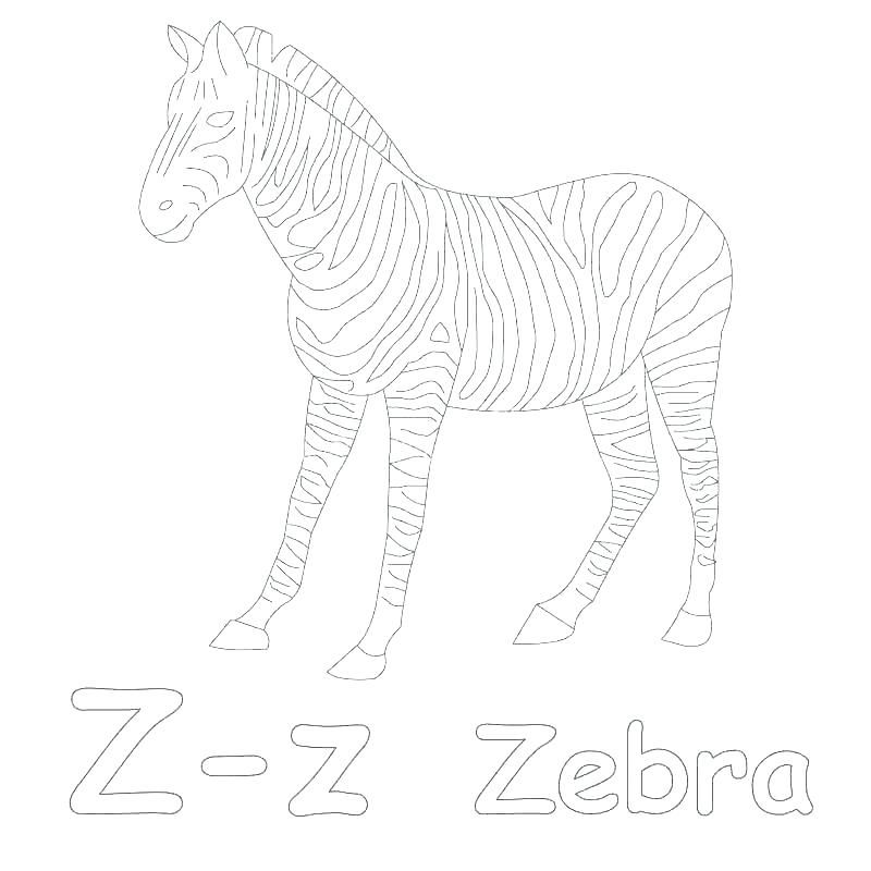 Zebra Coloring Pages For Preschoolers