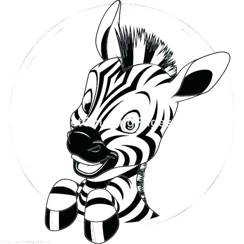 Zebra Colouring Pages For Preschool