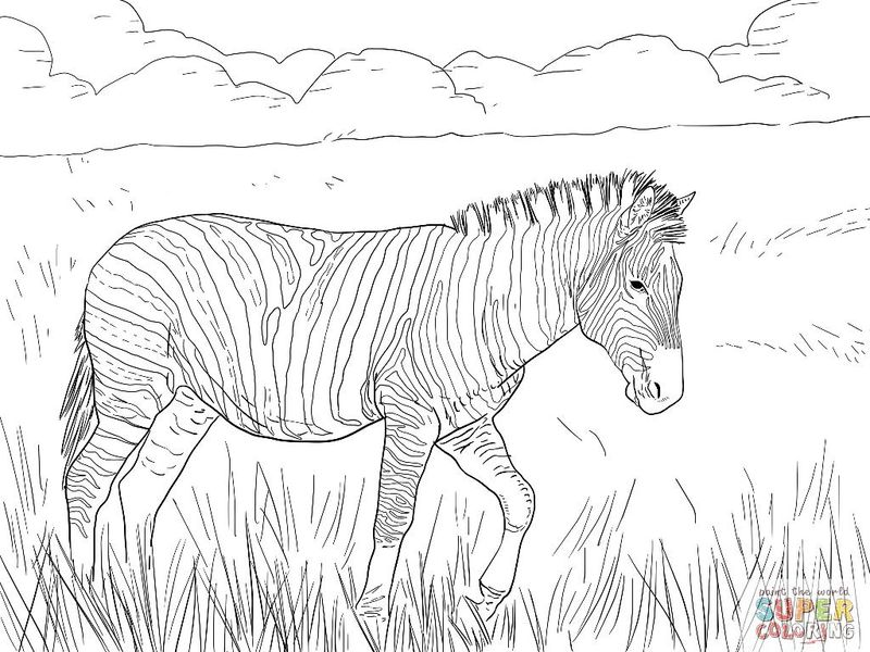 Zebra Crossing Coloring Pages