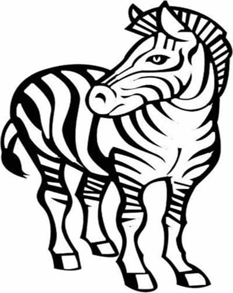 Zebra From Jungle Book Coloring Pages