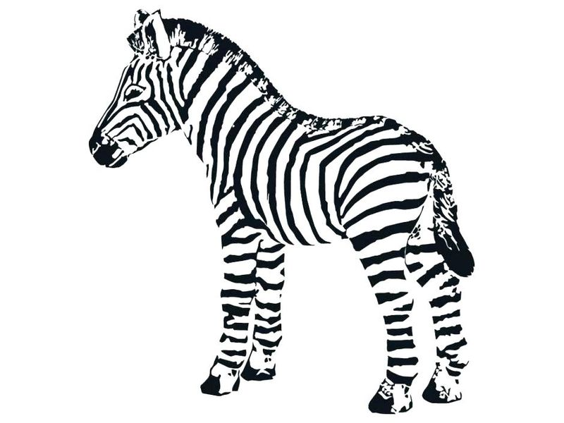 Zebra Pattern Coloring Pages