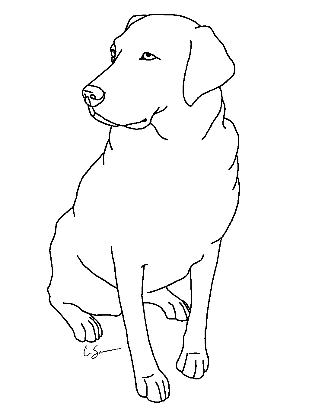 black lab dog coloring pages