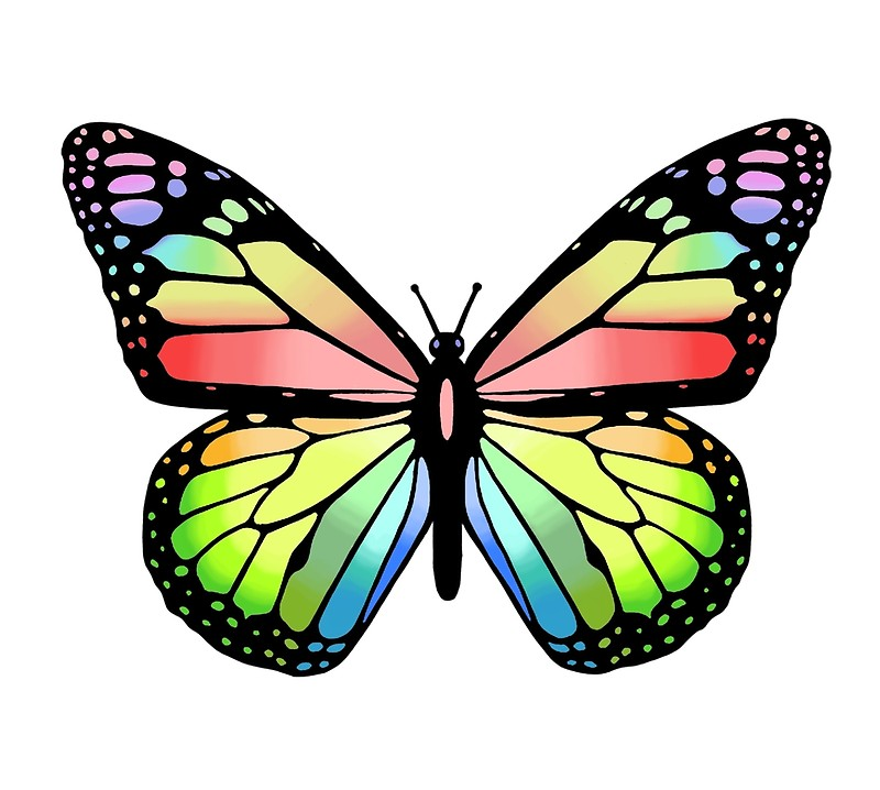 butterfly free coloring pages