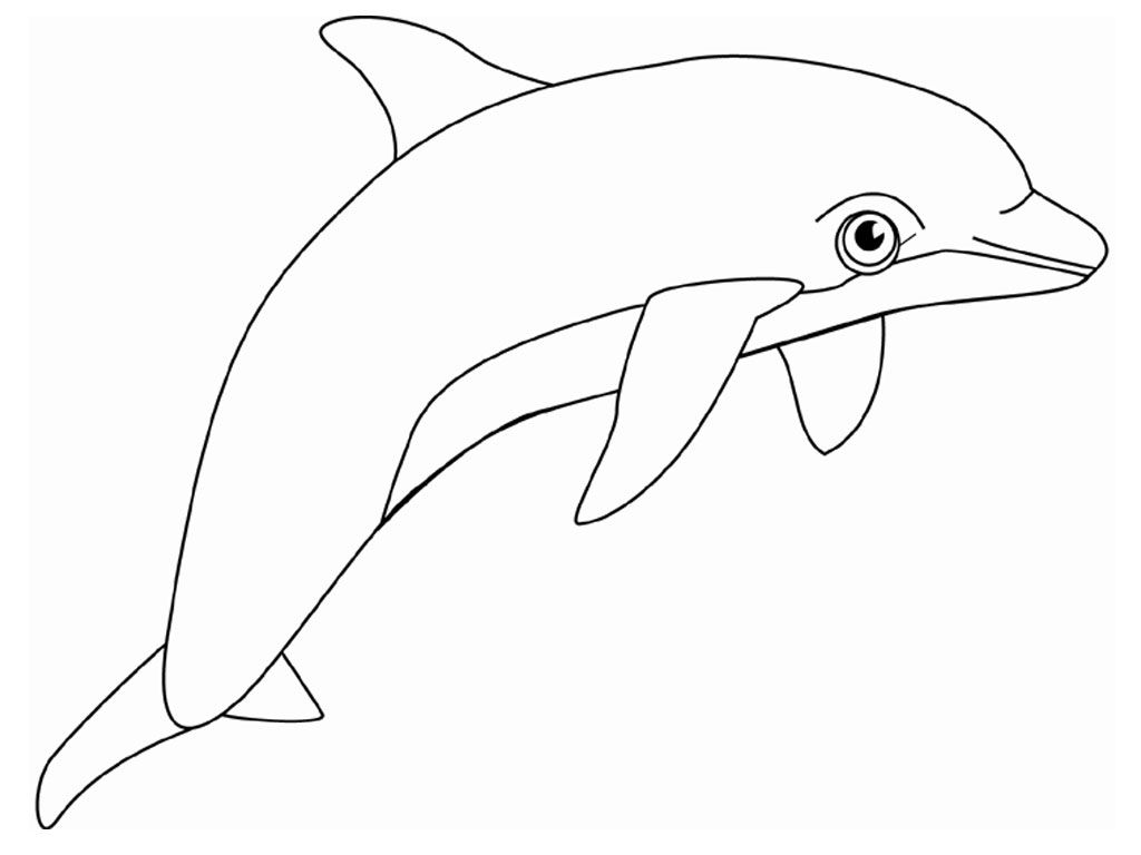 coloring pages dolphin