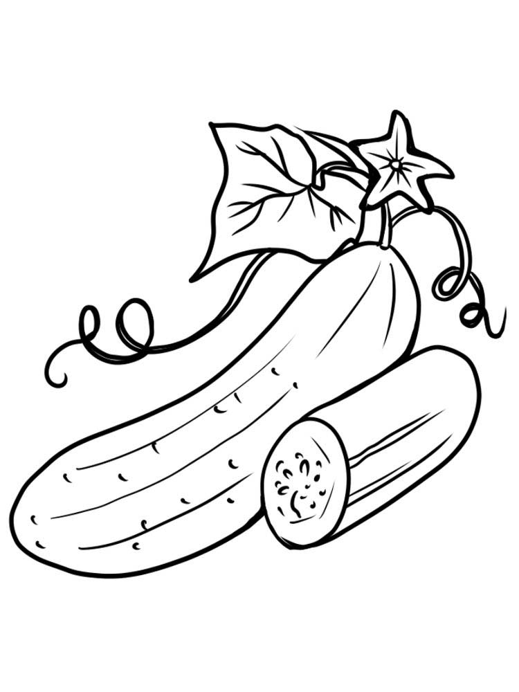 cucumber with leaf coloring pages pdf