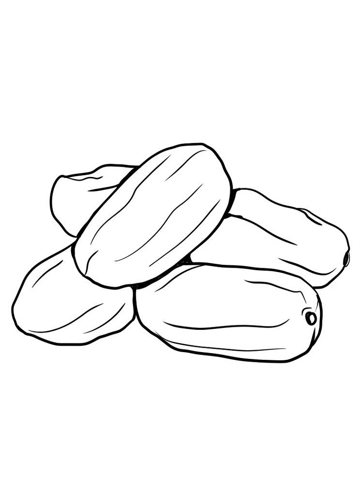 date fruit coloring pictures free pdf