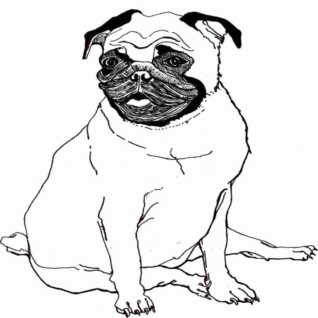 dog coloring book pages