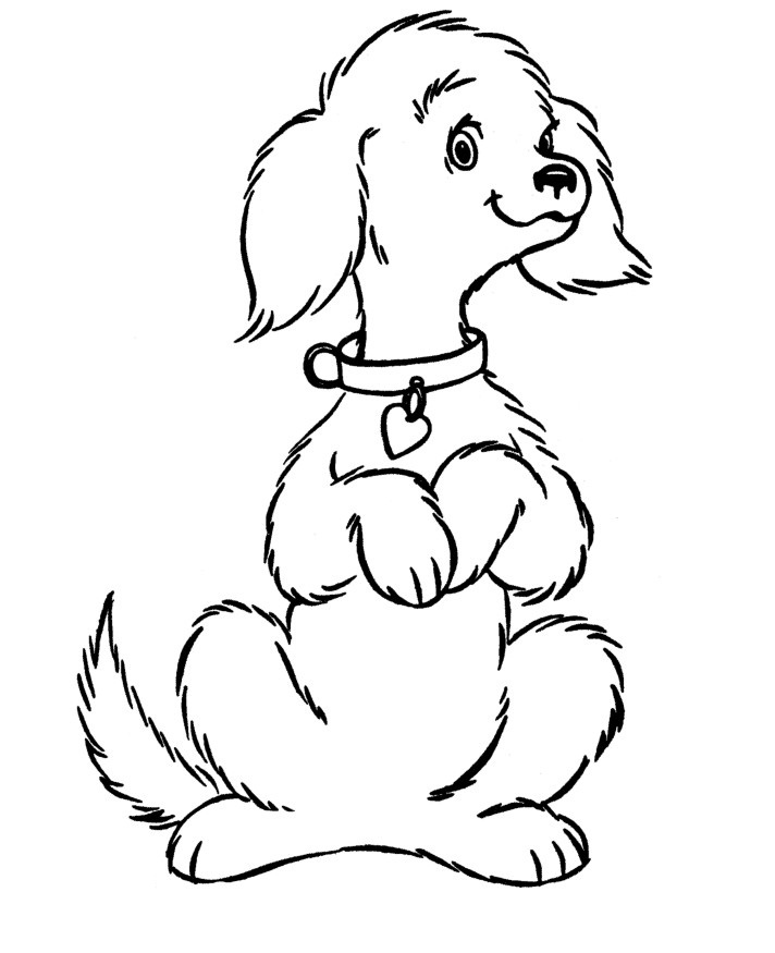 dog coloring pages for preschoolers
