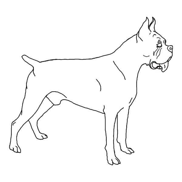 dog coloring pages realistic