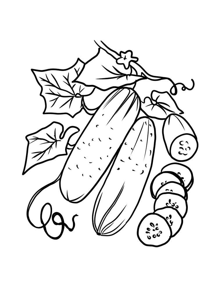 free cucumber coloring page print